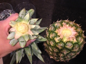 Twist the Top of the Pineapple right off