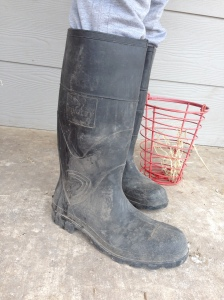"""High Fashion"" poop kickers for the homestead. Tall enough so poops won't splash on your clothes, and dark enough so the poop/blood doesn't show!"