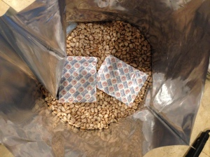 2-2000 cc Oxygen Absorbers in a 5 Gallon Bucket of Pinto Beans